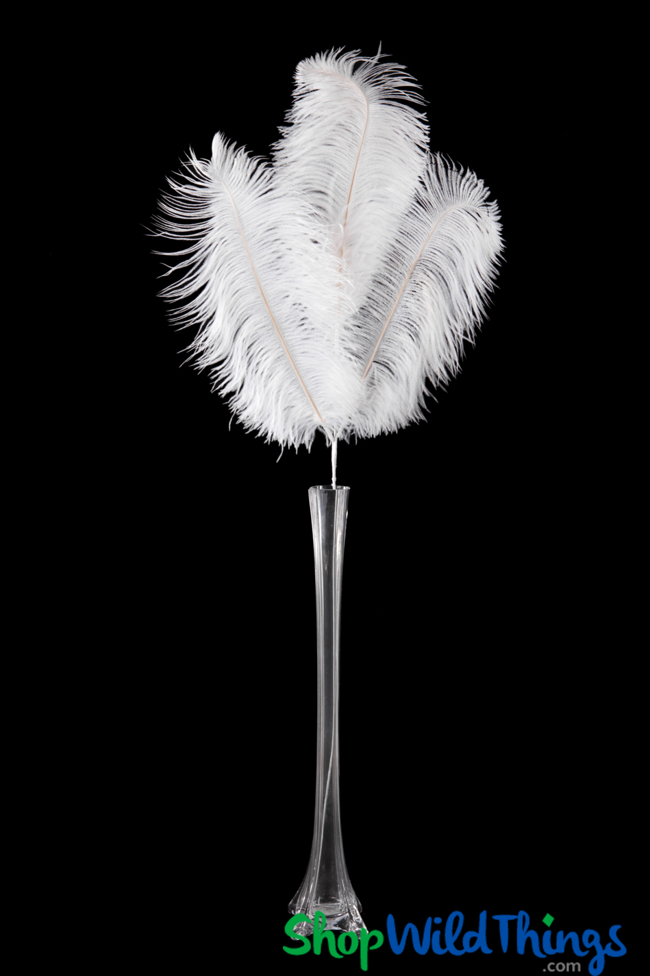 Ostrich feather decorations shopwildthings reviewsmspy