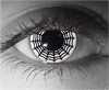 Spider Web Theatrical Contact Lenses