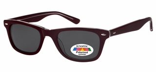 Polarized Sunglasses AP101