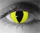Yellow Cat Theatrical Contact Lenses