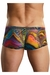 Aquarious Sheer Pouch Trunk Underwear