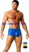 Arabian Boxer Men's Swimsuit