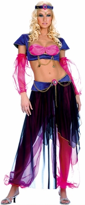 Belly Dancer Costume - Clearance