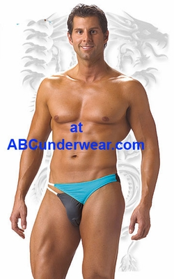 Cayman Brief Swimsuit