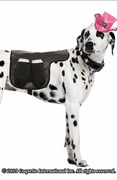 Costume Dog Saddle