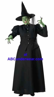 Deluxe Plus Size Witch Costume