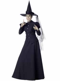 Deluxe Witch Costume Clearance