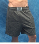 Everlast Jersey Shorts - Small