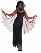 Gothic Maiden Women's Costume