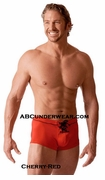 Icon Swimmer Boxer - Clearance