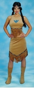 Indian Babe Adult Costume