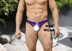 Italian Sheer Sexy Men's Purple Brief