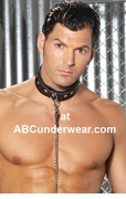 Leather Collar - Clearance