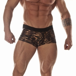 Metallic Tiger Mini Boxer Underwear
