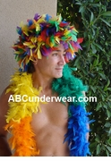 Rainbow Feather Wig