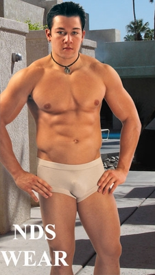 mens underwear brief