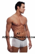 Sheer Window Pane V-Front Boxer