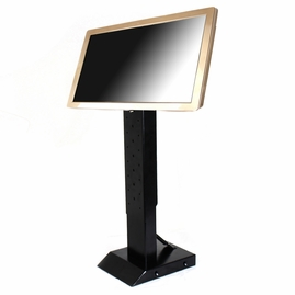 """Acesonic Touch Screen (19.5"""", Gold) with Adjustable Stand"""