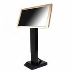 Acesonic Touch Screen (19.5&quote;, Gold) with Adjustable Stand