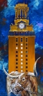 Code Orange: UT Tower with Bevo XIV artwork series