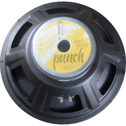 "Jensen Speakers PUNCH 15"" 250W Bass Guitar Speaker"