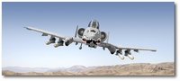 A-10 Thunderbolt II by Larry McManus