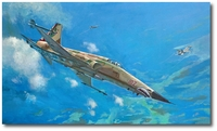 A View to Kill by Bryan David Snuffer (F-5N Tiger II)