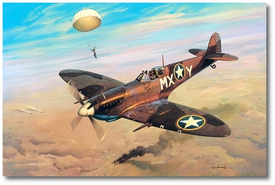 Adding Insult to Injury by Roy Grinnell (Spitfire)