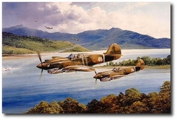 Chennault's Flying Tigers by Robert Taylor