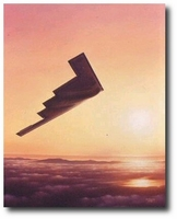 B-2 Spirit by Domenic DeNardo (B-2 Stealth)