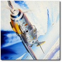 Battle Over the Reich by Troy White (Me109)
