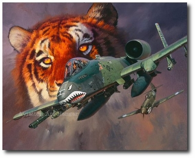 Burma to Baghdad by Roy Grinnell (A-10 Thunderbolt II)