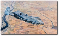 Burn It Down by Rick Herter (A-10 Thunderbolt)