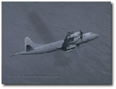 ...But You Can't Hide by Mickey Harris (P-3 Orion)