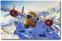 Calamity Jane Coming Home by Troy White (B-24 Liberator)