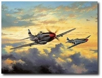Combat Leaders by David Poole (P-51)