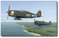 Deadly Duo by David Gray (P-47 Thunderbolt)