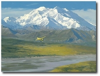 Denali Summer by William S. Phillips (De Havilland Beaver)