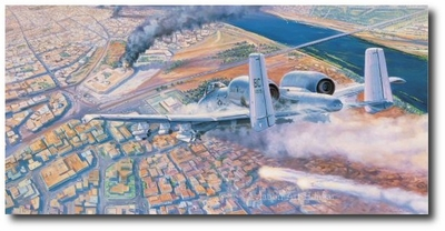DFC Over Baghdad by Rick Herter (A-10 Warthog)