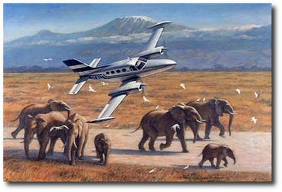 Drama At Amboseli by Ronald Wong (Cessna 402)
