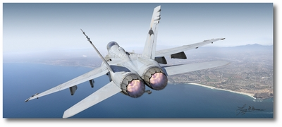 F/A-18D Hornet by Larry McManus