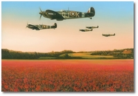 Fields of Glory by Richard Taylor (Spitfire)