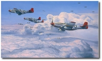 Fighting Red Tails - The Tuskegee Airmen by Robert Taylor (P-51)