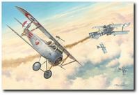 First American Ace by Roy Grinnell