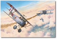 First American Ace by Roy Grinnell (AFAA)