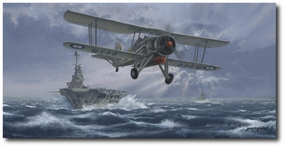 Flight Against the Bismarck