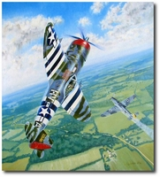 Gabby's 28th by Troy White (P-47 Thunderbolt)