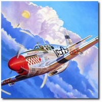 Hat Trick for Reggie's Reply by Troy White (P-51 Mustang)