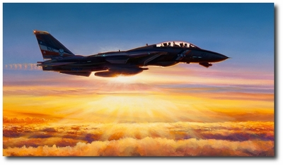 In the Courtyard of God by Rick Herter (F-14 Tomcat)