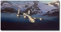 Liberator! (Crusader in the Valley) by Jack Fellows (B-24)